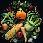 Какую опасность содержит в себе питание растительной пищей?