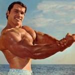 Пауэрлифтинг — базовые упражнения