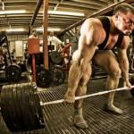 Если мышцы больше, это не значит что они сильнее